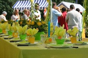 Outdoor Wedding Event Application -  (2 Applications)